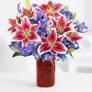 ProFlowers - 50% Off Valentine's Day Spectacular Bouquet
