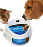 Contech Large ChatterBowl Talking Pet Bowl for Cats and Dogs
