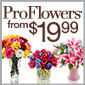 ProFlowers - Valentine's Day Flowers Starting at $19.99 + Free Vase