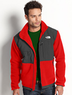 The North Face Polartec Denali Fleece Jacket