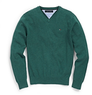 Men's Solid V-Neck Sweater