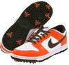 Nike Men's Golf Dunk NG Shoes