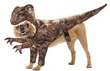 1800PetSupplies - 10% Off Halloween Essentials