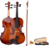 4/4 Full-Size Acoustic Violin Fiddle w/ Case, Bow & Rosin