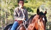Haven Horse Ranch Coupons Saint Augustine, Florida Deals