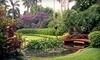 Sunken Gardens Coupons St. Petersburg, Florida Deals