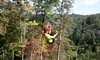 Red River Gorge Zipline Coupons Campton, Kentucky Deals