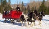 Idaho Sleigh Rides Coupons Garden Valley, Idaho Deals