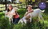 Green Meadows Petting Farm Coupons East Troy, Wisconsin Deals