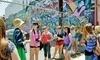 Graff Tours Coupons Los Angeles, California Deals