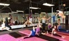 Polecats Aerial Fitness Coupons Las Vegas, Nevada Deals