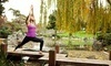 Yoga at Cindy's Coupons Sunnyvale, California Deals