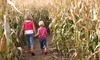 Cobb's Corn Maze & Family Fun Park Coupons Calgary, Alberta Deals