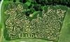 Eliada Foundation - Corn Maze Coupons