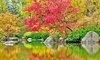 Anderson Japanese Gardens Coupons Rockford, Illinois Deals