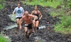 FL.ROC Running Obstacle Challenge Coupons Bunnell, Florida Deals