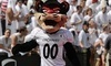 Cincinnati Bearcats Football Coupons