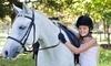 Hidden Hills Farm & Saddle Club Coupons