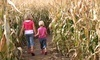 Frankenmuth Corn Maze Coupons