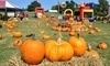 Sand Springs Pumpkin Patch Festival Coupons