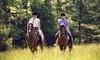 Equestrian Arts Coupons