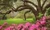 Magnolia Plantation & Gardens Coupons