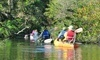 Motorized Kayak Adventures Coupons