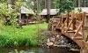 Lake Creek Lodge Coupons