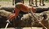 Mud Ninja Extreme Challenge Coupons