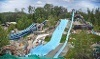 Enchanted Forest Water Safari Coupons
