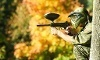 Paintball Indianapolis Coupons