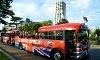 Big Bus Victoria Coupons