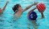 Chawp Aquatics Coupons
