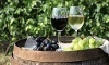 Vin & Wine Coupons