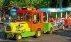 Yogi Bear's Jellystone Park Resort Coupons