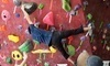 The Circuit Bouldering Gym Coupons
