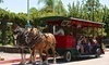 The Temecula Carriage Company Coupons