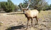 Wildlife West Nature Park Coupons