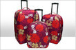 Topnet - Luggage - December 2012 Coupons Kissimmee, FL Deals