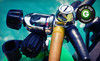 Adventure Diving Coupons Crystal River, Florida Deals