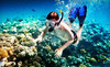 Snorkeling Catalina Coupons Avalon, California Deals