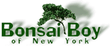 Bonsai Boy of New York