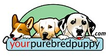 Your Purebred Puppy Coupons